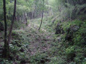 露頭掘り跡