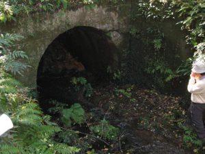 柑子谷の永久鉱山跡